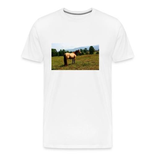 IMG_20150903_140848-jpg - Men's Premium T-Shirt