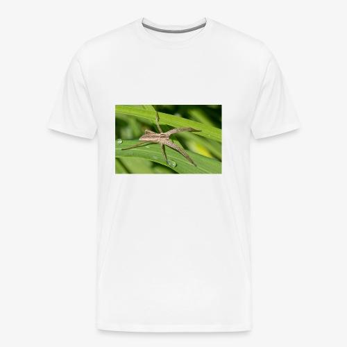 Spinne auf dem Blatt - Männer Premium T-Shirt
