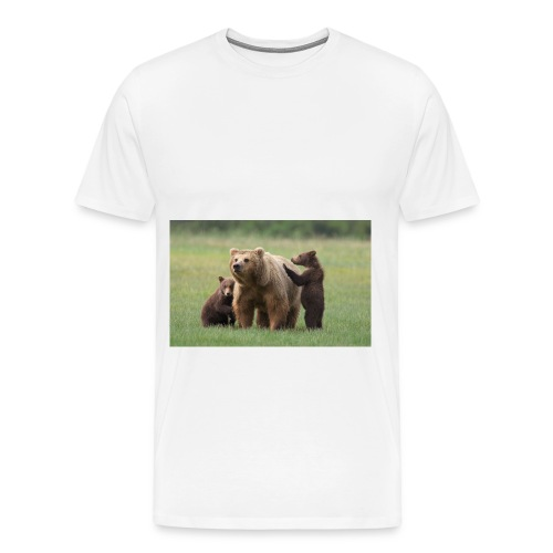 6a00e54fcf73858834019b046fd234970d jpg - Men's Premium T-Shirt