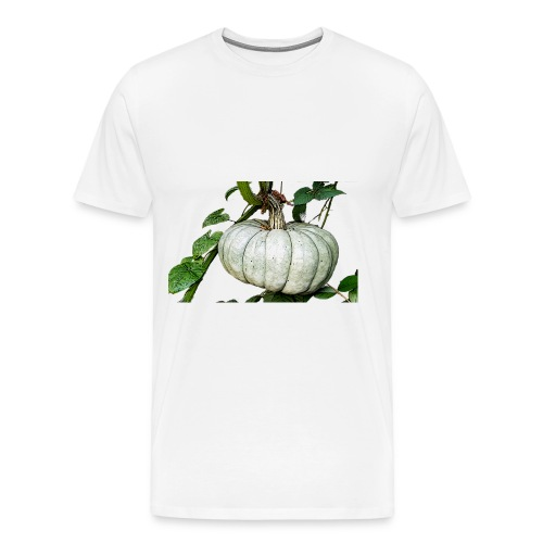 Kürbiszeit - Männer Premium T-Shirt