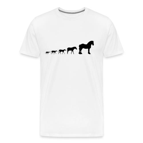 shire evolution png - Men's Premium T-Shirt