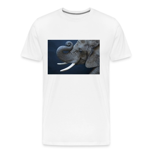 1275458 jpg - Mannen Premium T-shirt