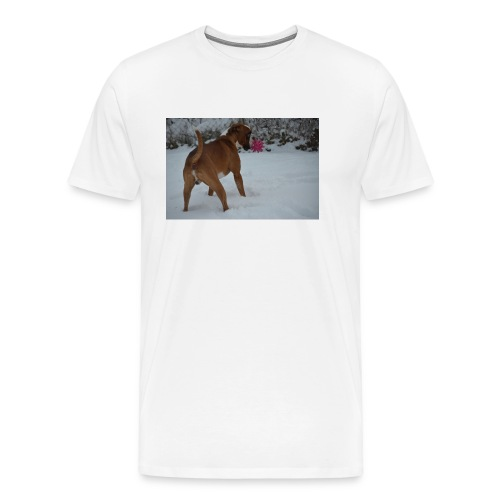 erster Schnee 158 JPG - Männer Premium T-Shirt