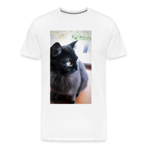 IMG 20180316 170003 140 - Camiseta premium hombre