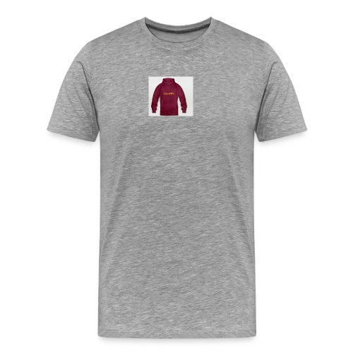 Queeni hoodie - Herre premium T-shirt