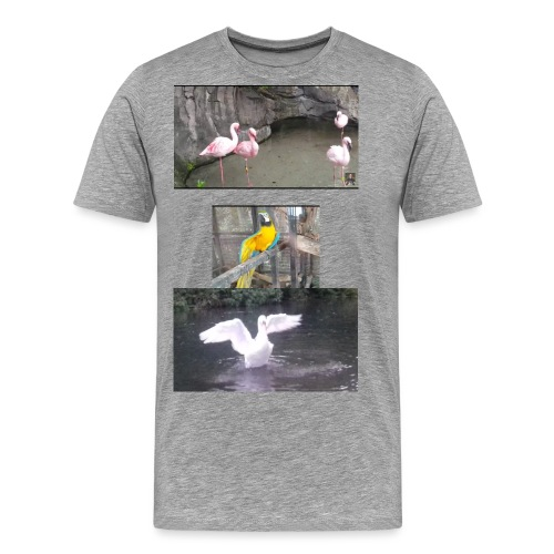 thumbnail Screenshot 2017 02 19dsr 00 06 21 1 jpg - Men's Premium T-Shirt