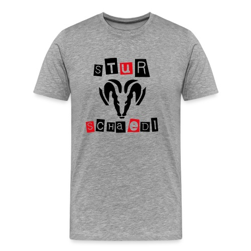 Sturschaedl Band-Logo (heller Hintergrund) - Männer Premium T-Shirt