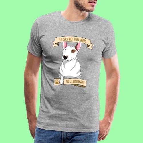 No la embarres! - Camiseta premium hombre