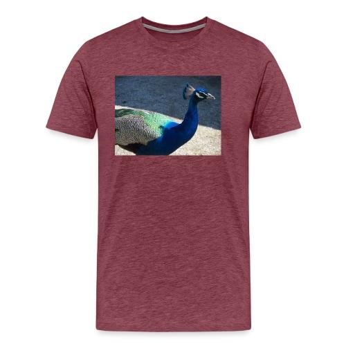 Riikinkukko - Miesten premium t-paita