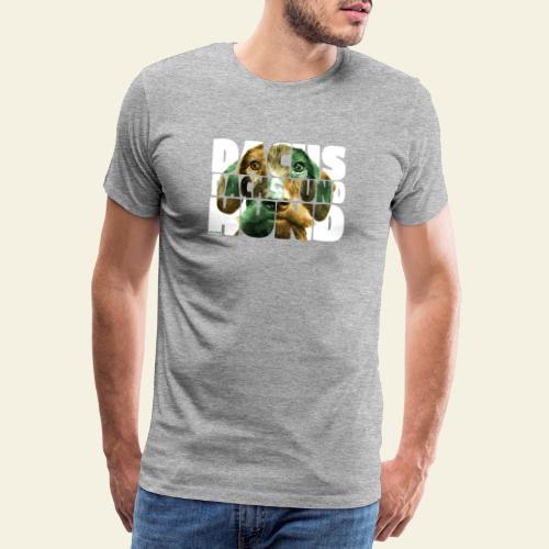 NASSU Karkkari 003 - Miesten premium t-paita