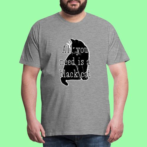 Todo lo que necesitas es... - Camiseta premium hombre