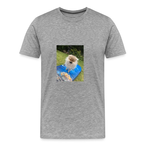 Surfa - Premium-T-shirt herr