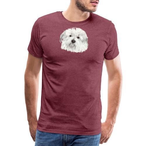 coton-de-tulear - Herre premium T-shirt