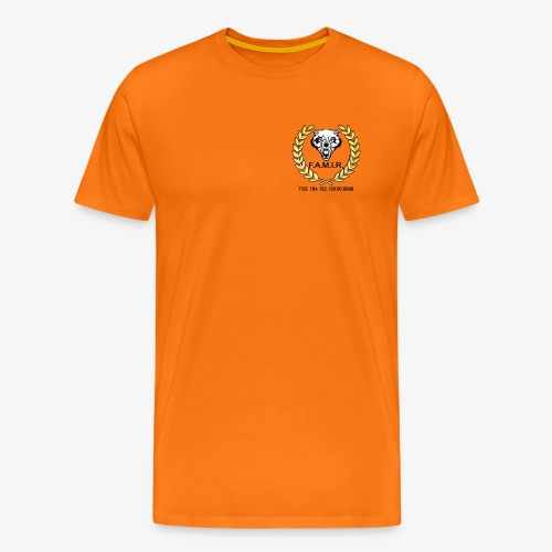 Logo Streaming3 - Camiseta premium hombre