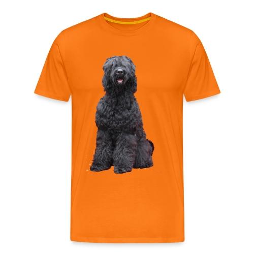 Bogdan - Männer Premium T-Shirt