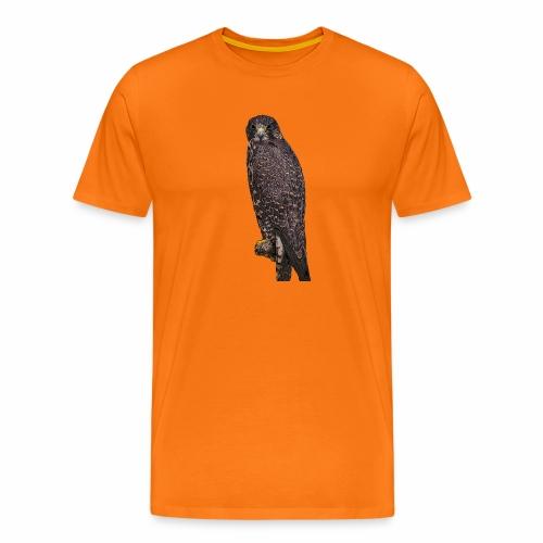 Bussard - Männer Premium T-Shirt