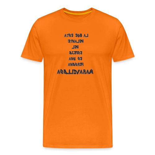 Para el Espejo:PERSONA MARAVILLOSA - Camiseta premium hombre
