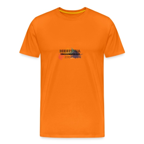 Skolegenser - Premium T-skjorte for menn