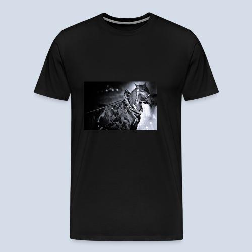 Noriker - Männer Premium T-Shirt