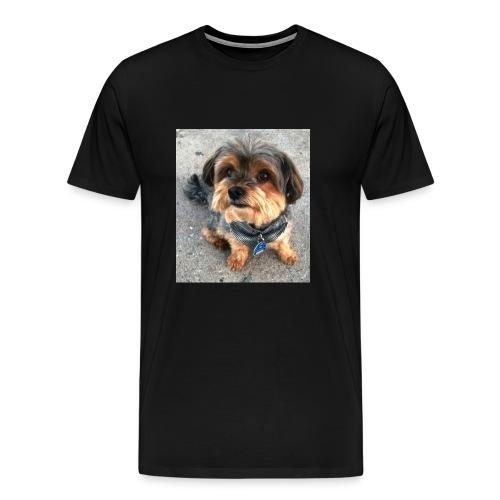 WP 20140703 002 - Männer Premium T-Shirt