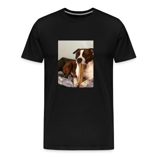 American Staffordshire Terrier - Männer Premium T-Shirt