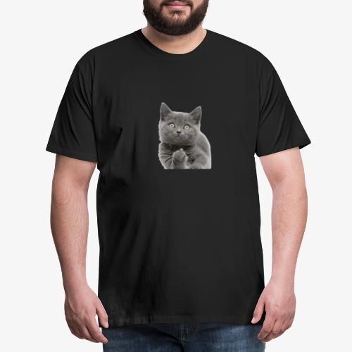 Gato dedo gatos cats - Camiseta premium hombre