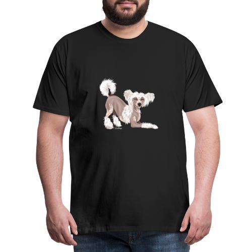 Harjakoira V - Miesten premium t-paita