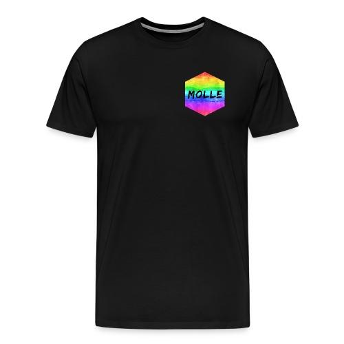 molle rainbow - Miesten premium t-paita