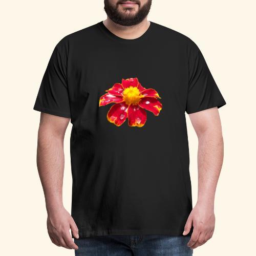rote Ringelblume mit Regentropfen, Blume, Blüte - Männer Premium T-Shirt