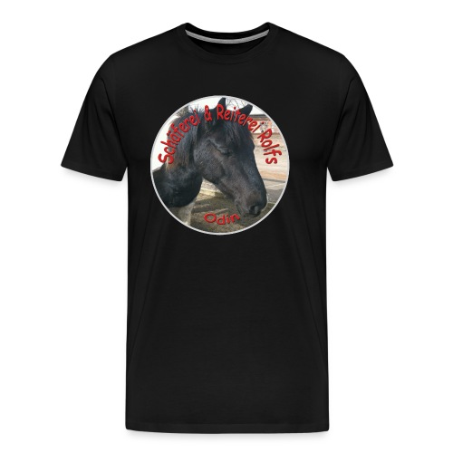 Odin - Männer Premium T-Shirt