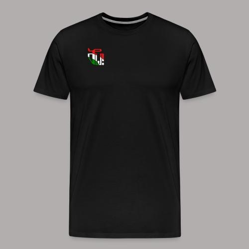 Zirkel r w g (vorne) - Männer Premium T-Shirt
