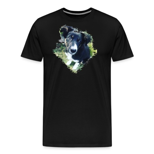 colliegermanshepherdpup - Men's Premium T-Shirt