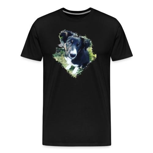 colliegermanshepherdpup - Men's Premium T-Shirt