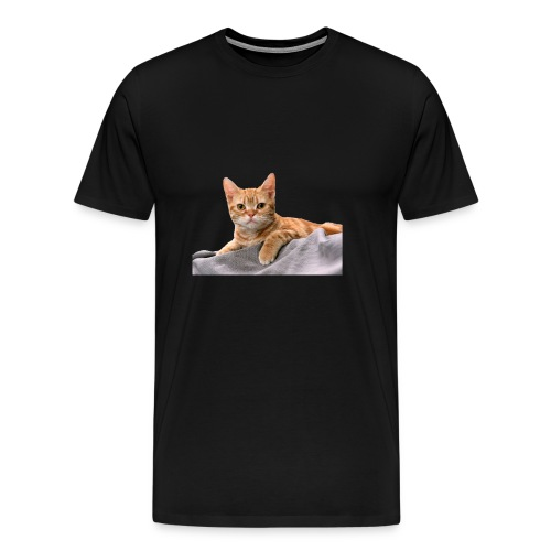 Cuddly Cute Kitty Cat - Men's Premium T-Shirt