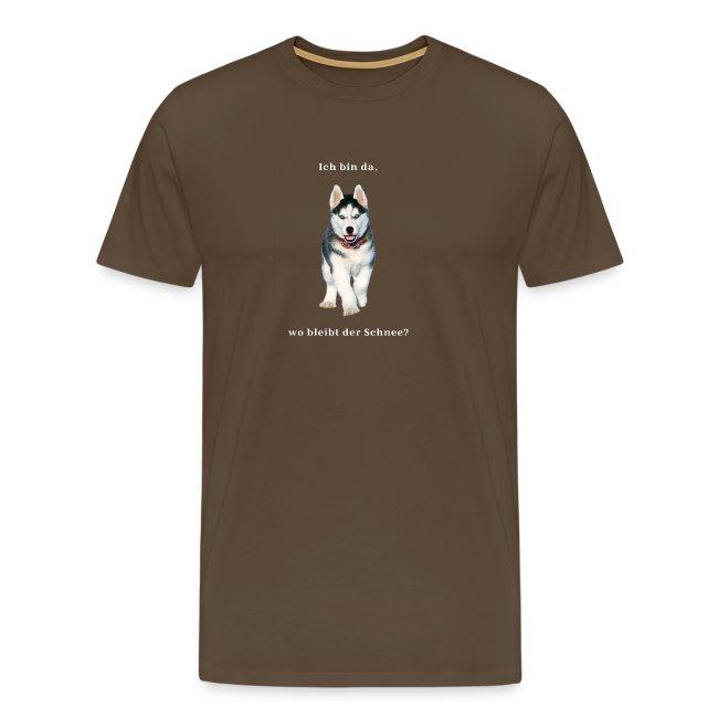 Husky Welpen mit bezaubernden Augen