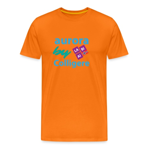 Aurora by Colligere - Premium T-skjorte for menn