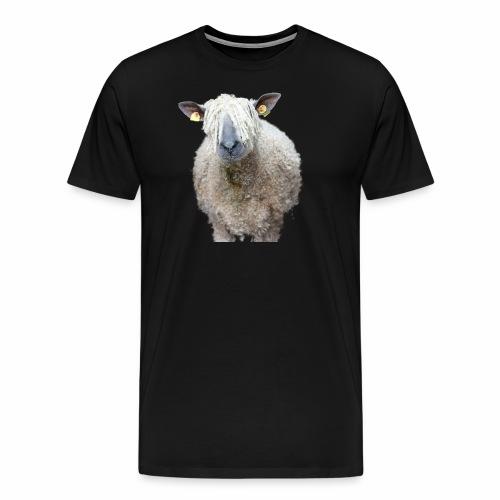 Durchblick! Wo Wolle du hin, Schaf? - Männer Premium T-Shirt