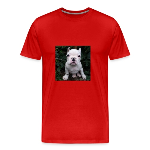 Billy Puppy 2 - Mannen Premium T-shirt