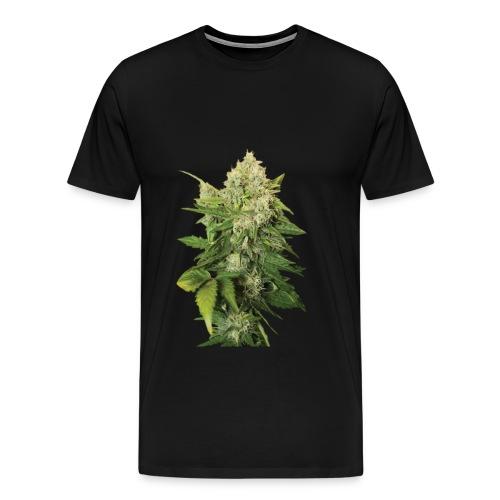 Cannabis Bud real - Männer Premium T-Shirt