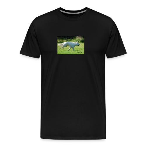 615966_10151122370701589_1082503723_o - Premium-T-shirt herr