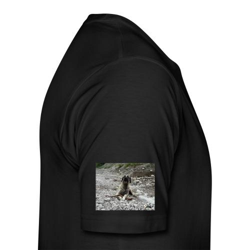 Kangal im Flußbett - Männer Premium T-Shirt
