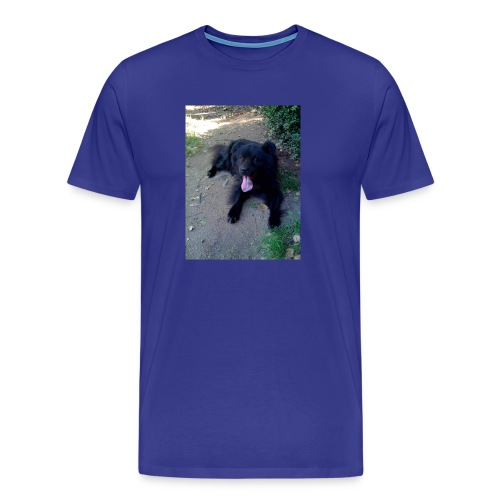 IMG_0039-001 - Maglietta Premium da uomo