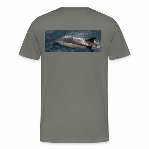 delfin comun - Camiseta premium hombre
