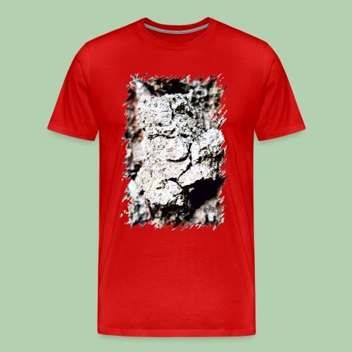 Steini - Männer Premium T-Shirt