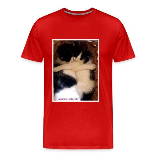 Umarmung - Männer Premium T-Shirt