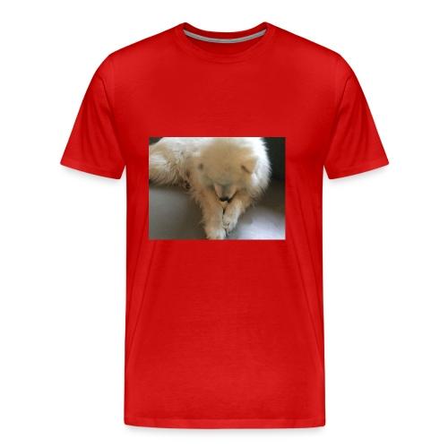 Olle - Mannen Premium T-shirt