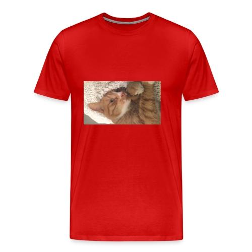 Epke - Mannen Premium T-shirt