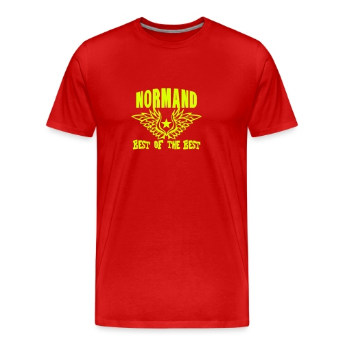 normand breton best of the best - T-shirt Premium Homme