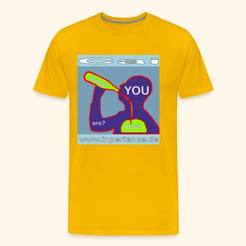 Cai 0001 Are you happy now? - Männer Premium T-Shirt