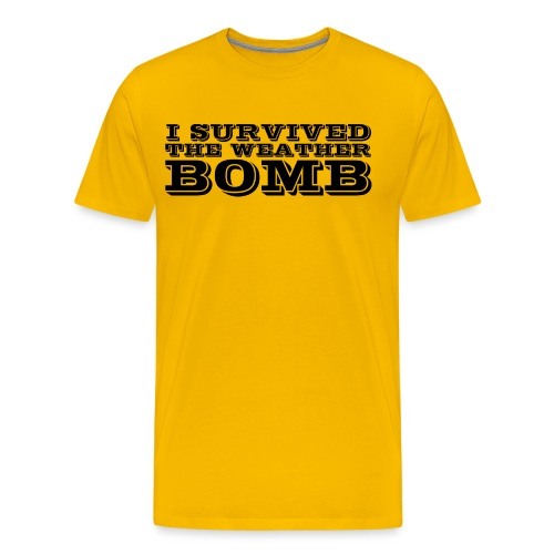 Weather Bomb - Men's Premium T-Shirt